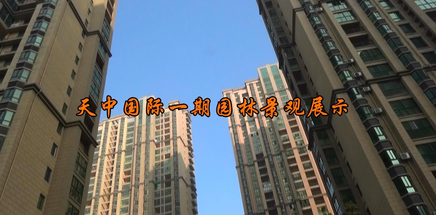 天中国际一期园林景观展示