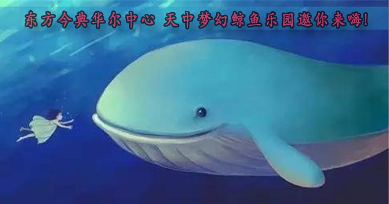 【东方今典华尔中心】 天中梦幻鲸鱼乐园邀你来嗨!