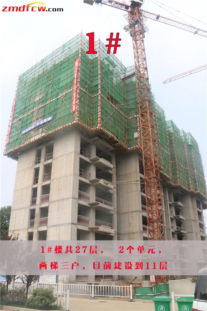 1#楼目前正在建设第11层