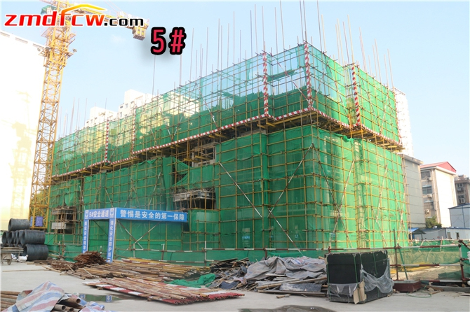 5#楼已建到四层
