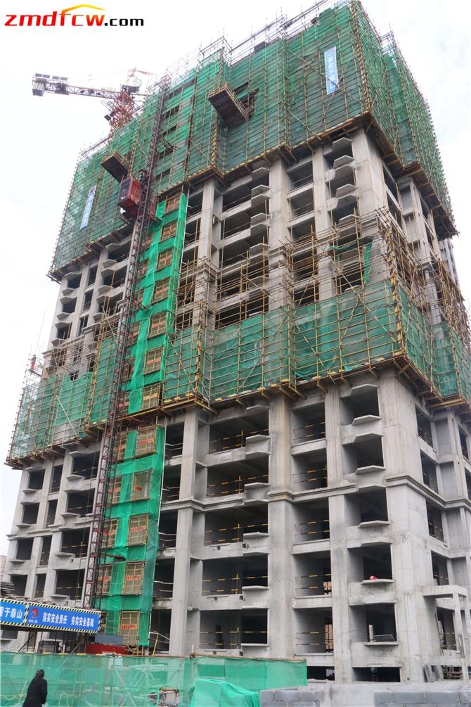 15#楼和16#楼已建到20层