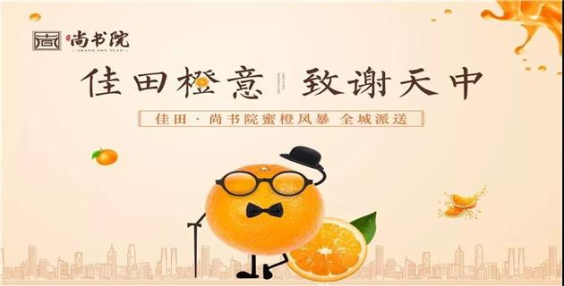 【佳田尚书院】橙蒙厚爱 以橙致敬天中美好生活