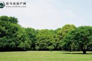 【中蓝香溪湾】聆听万物共生的音律